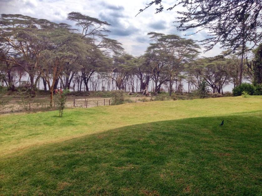 10. Ranch House Bistro Naivasha Akinyi Adongo