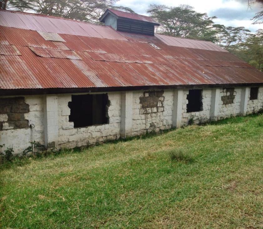 2. Ranch House Bistro Naivasha Akinyi Adongo