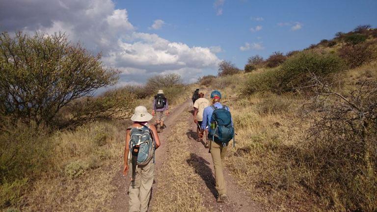 5 Walk With Rangers Akinyi Adongo Elephant Conservation