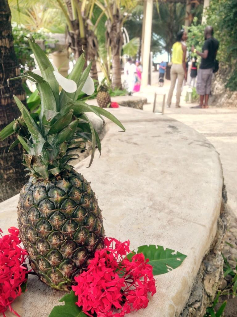 10 Ciroc Vodka Pineapple Launch Akinyi Adongo