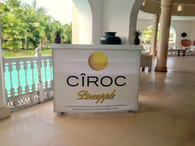 6 Ciroc Vodka Pineapple Launch Akinyi Adongo